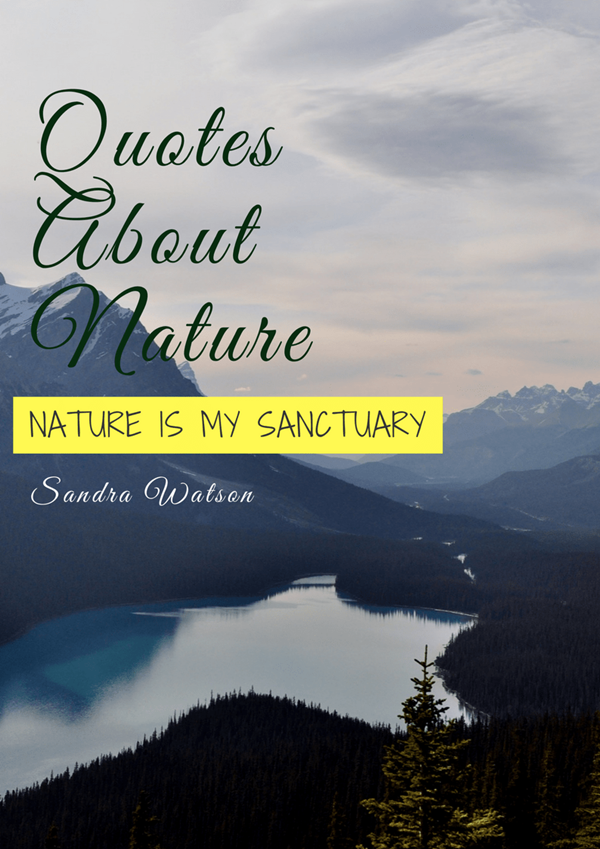 101 Inspirational Nature Quotes With Images Pitchzine